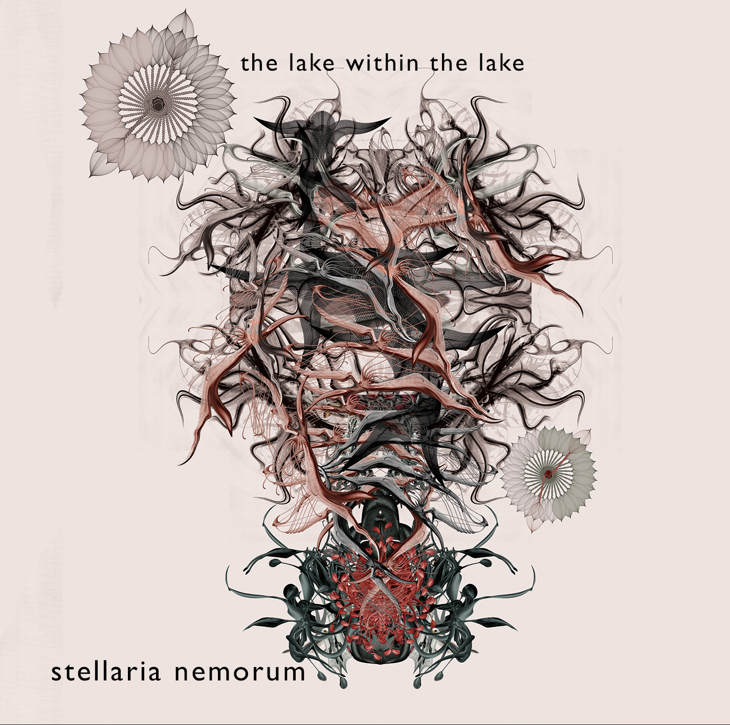 The lake within the lake Stellaria Nemorum release
